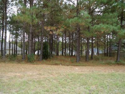 Berrien County, Lanier County, Lowndes County Residential Lots & Land For Sale: 4108 Shetland Circle