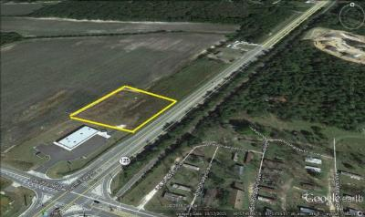Commercial Lots & Land For Sale: 4780 Davidson Road