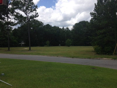 Commercial Lots & Land For Sale: .089 Ac Northside Drive