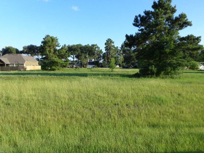 Residential Lots & Land For Sale: 5634 Timber Wind Circle