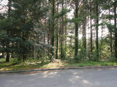 Residential Lots & Land For Sale: 4459 Mathis Mill Rd.