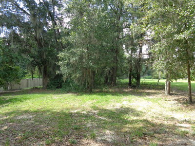 Valdosta Residential Lots & Land For Sale: 1133 N Lakeshore Drive