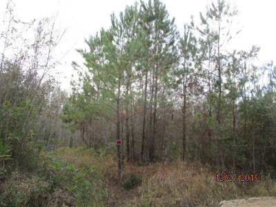 Berrien County, Lanier County, Lowndes County Residential Lots & Land For Sale: 10 Acres Sermans Road