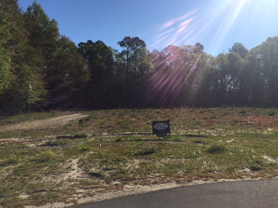 Hahira Residential Lots & Land For Sale: 5950 Union Springs