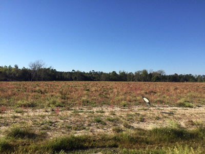 Hahira Residential Lots & Land For Sale: 6021 Union Springs