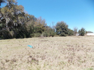 Valdosta Residential Lots & Land For Sale: 4980 Bentwood Court