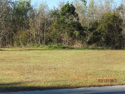 Valdosta Residential Lots & Land For Sale: 4021 Emerson Way
