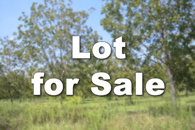 Hahira Residential Lots & Land For Sale: 7385 North Creek Circle