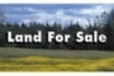 Cook County Residential Lots & Land For Sale: Lot Edward Warren Rd.