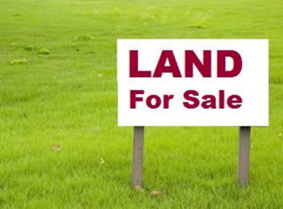 Hahira Residential Lots & Land For Sale: Hwy 41