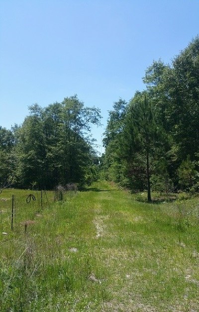 Berrien County Residential Lots & Land For Sale: Vickers Road