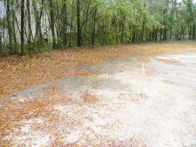 Berrien County, Lanier County, Lowndes County Residential Lots & Land For Sale: Riviera Prado