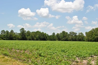Commercial Lots & Land For Sale: Tbd Rountree Bridge Road