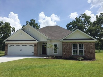 Berrien County, Brooks County, Cook County, Lanier County, Lowndes County Single Family Home For Sale: 3558 Desirable Drive