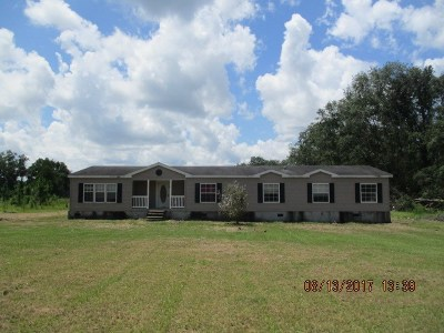 Lowndes County Single Family Home For Sale: 1042 Us Hwy 129 S
