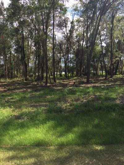 Berrien County, Lanier County, Lowndes County Residential Lots & Land For Sale: 5501 & 5 Timber Wind Circle
