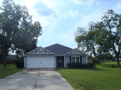 Berrien County, Brooks County, Cook County, Lanier County, Lowndes County Single Family Home For Sale: 54 Mill Pond Place