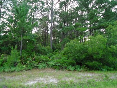 Berrien County, Lanier County, Lowndes County Residential Lots & Land For Sale: Tract 5 Range Road