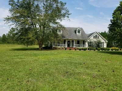 Berrien County, Brooks County, Cook County, Lanier County, Lowndes County Single Family Home For Sale: 359 Marie Prince Road