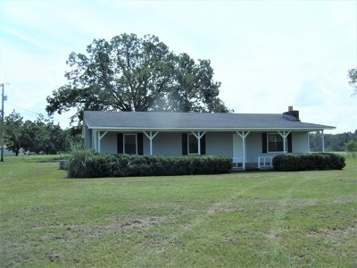 Berrien County, Brooks County, Cook County, Lanier County, Lowndes County Single Family Home For Sale: 1510 Fellowship Road