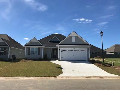 Hahira Single Family Home For Sale: 4155 Silver Glen