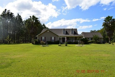 Berrien County, Brooks County, Cook County, Lanier County, Lowndes County Single Family Home For Sale: 5540 Bland Dairy Rd.