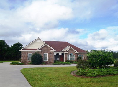 Berrien County, Brooks County, Cook County, Lanier County, Lowndes County Single Family Home For Sale: 4015 Island Creek