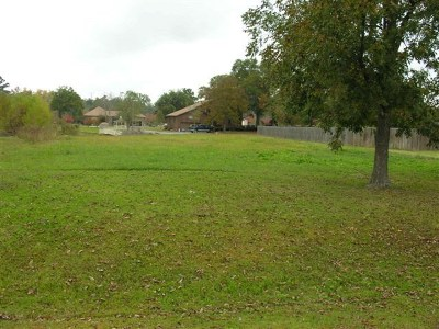 Lanier County Residential Lots & Land For Sale: Eleanor Place