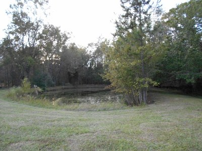 Berrien County, Lanier County, Lowndes County Residential Lots & Land For Sale: 277 Barney Parker Rd