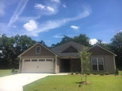 Berrien County, Brooks County, Cook County, Lanier County, Lowndes County Single Family Home For Sale: 3844 Coventry