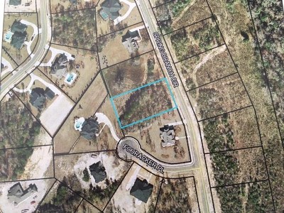 Berrien County, Lanier County, Lowndes County Residential Lots & Land For Sale: 4193 Spring Branch Cr