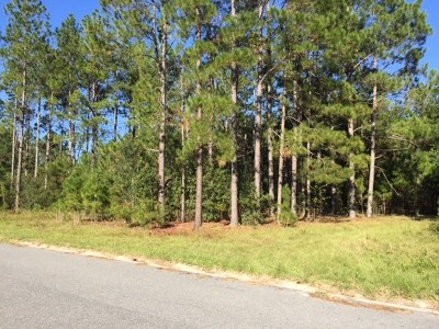 Berrien County, Lanier County, Lowndes County Residential Lots & Land For Sale: 2657 Naples Lane - Lot 16