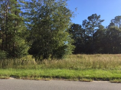 Berrien County, Lanier County, Lowndes County Residential Lots & Land For Sale: 2562 Tuscan Way - Lot 10