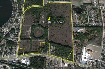 Commercial Lots & Land For Sale: 20 Acres Highway 41 & Long Pond Rd.