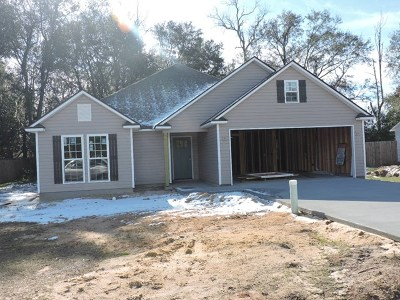 Berrien County, Brooks County, Cook County, Lowndes County Single Family Home For Sale: 450 Spanish Moss Lane