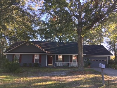 Berrien County, Brooks County, Cook County, Lanier County, Lowndes County Single Family Home For Sale: 2605 Pineview Drive