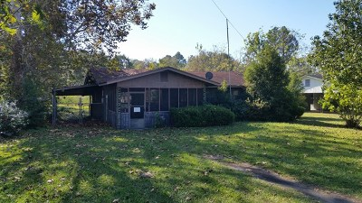 Berrien County, Brooks County, Cook County, Lanier County, Lowndes County Single Family Home For Sale: 713 W Fifth