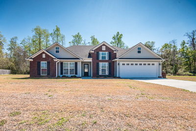 Berrien County, Brooks County, Cook County, Lanier County, Lowndes County Single Family Home For Sale: 38 Palmetto Pine Circle