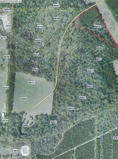 Residential Lots & Land For Sale: 5785 Skipper Bridge Road