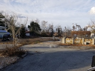 Berrien County, Lanier County, Lowndes County Residential Lots & Land For Sale: 3933 Sportsman Cove Road