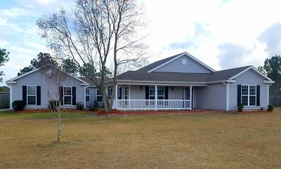 Berrien County, Brooks County, Cook County, Lanier County, Lowndes County Single Family Home For Sale: 527 Boyette Rd.