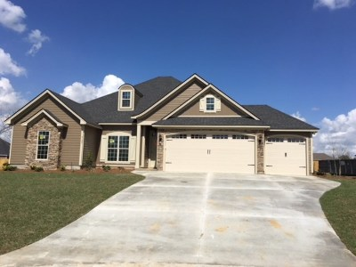 Berrien County, Brooks County, Cook County, Lanier County, Lowndes County Single Family Home For Sale: 4133 Ivy Run