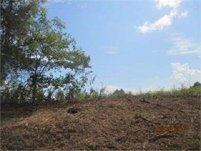 Brooks County Residential Lots & Land For Sale: Lot 10 Blease Road