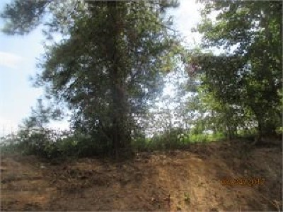 Brooks County Residential Lots & Land For Sale: Lot 11 Blease Road