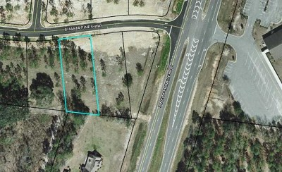 Residential Lots & Land For Sale: 5742 Shasta Pines Way