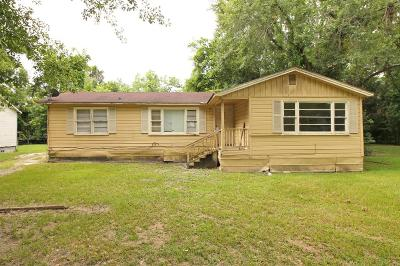 Berrien County, Brooks County, Cook County, Lanier County, Lowndes County Single Family Home For Sale: 526 Green Street