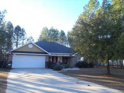 Berrien County, Brooks County, Cook County, Lanier County, Lowndes County Single Family Home For Sale: 53 Cypress Trail