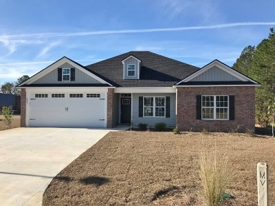 Single Family Home For Sale: 3981 Brightwell Drive