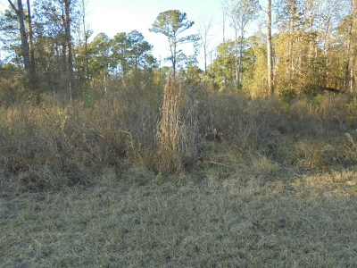 Lowndes County Residential Lots & Land For Sale: 4826 Lori Street