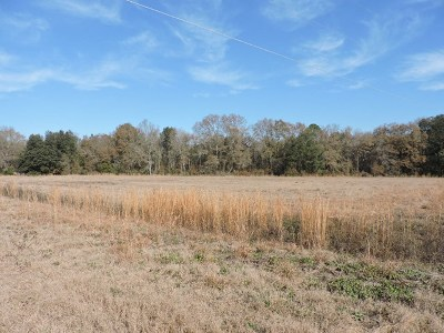 Cook County Residential Lots & Land For Sale: 15 Candler Court